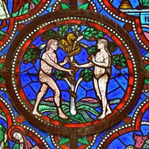 Vitral na Catedral de Saint-Julien de Mans, França